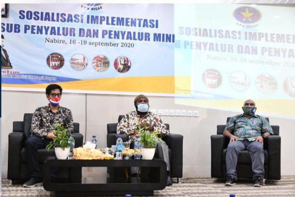 Anggota Komisi VII DPR Dapil Papua Marthen Douw