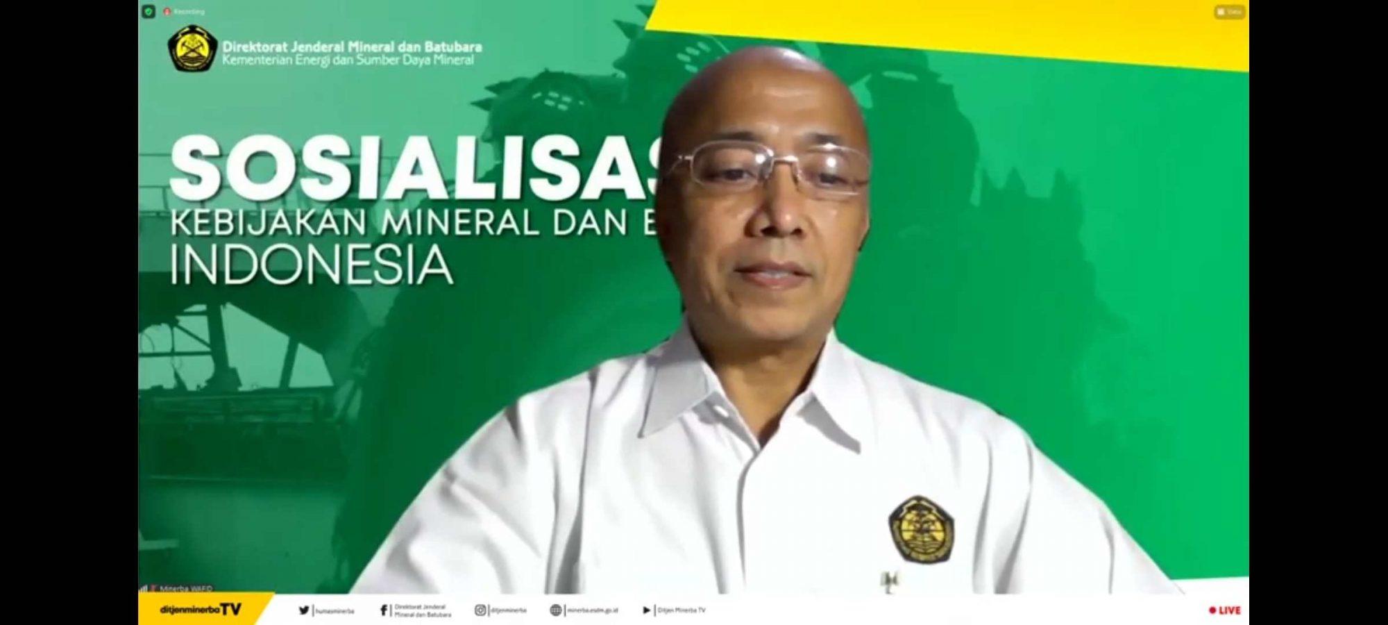 Direktur Penerimaan Minerba Kementerian ESDM